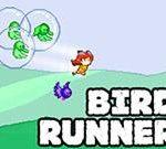Bird Runner