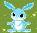Bunny Thumps