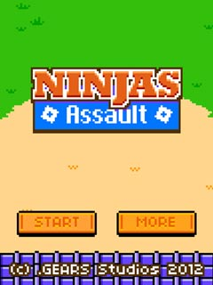 Image Ninjas Assault